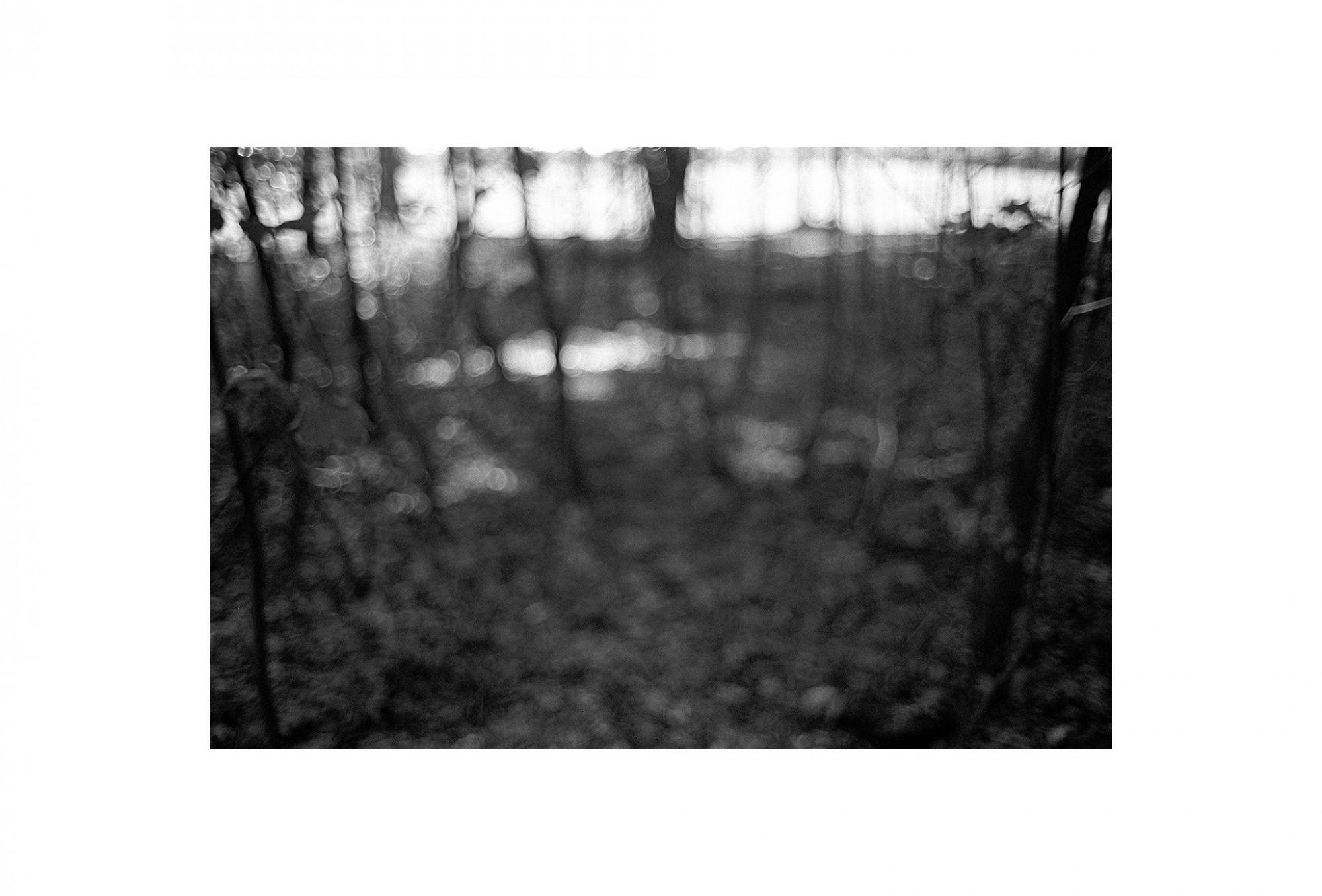Afbeelding: Uit de reeks: Bomen en het licht daarom heen. - nr. 96-48-13, fotokunst Dominique Van Huffel.