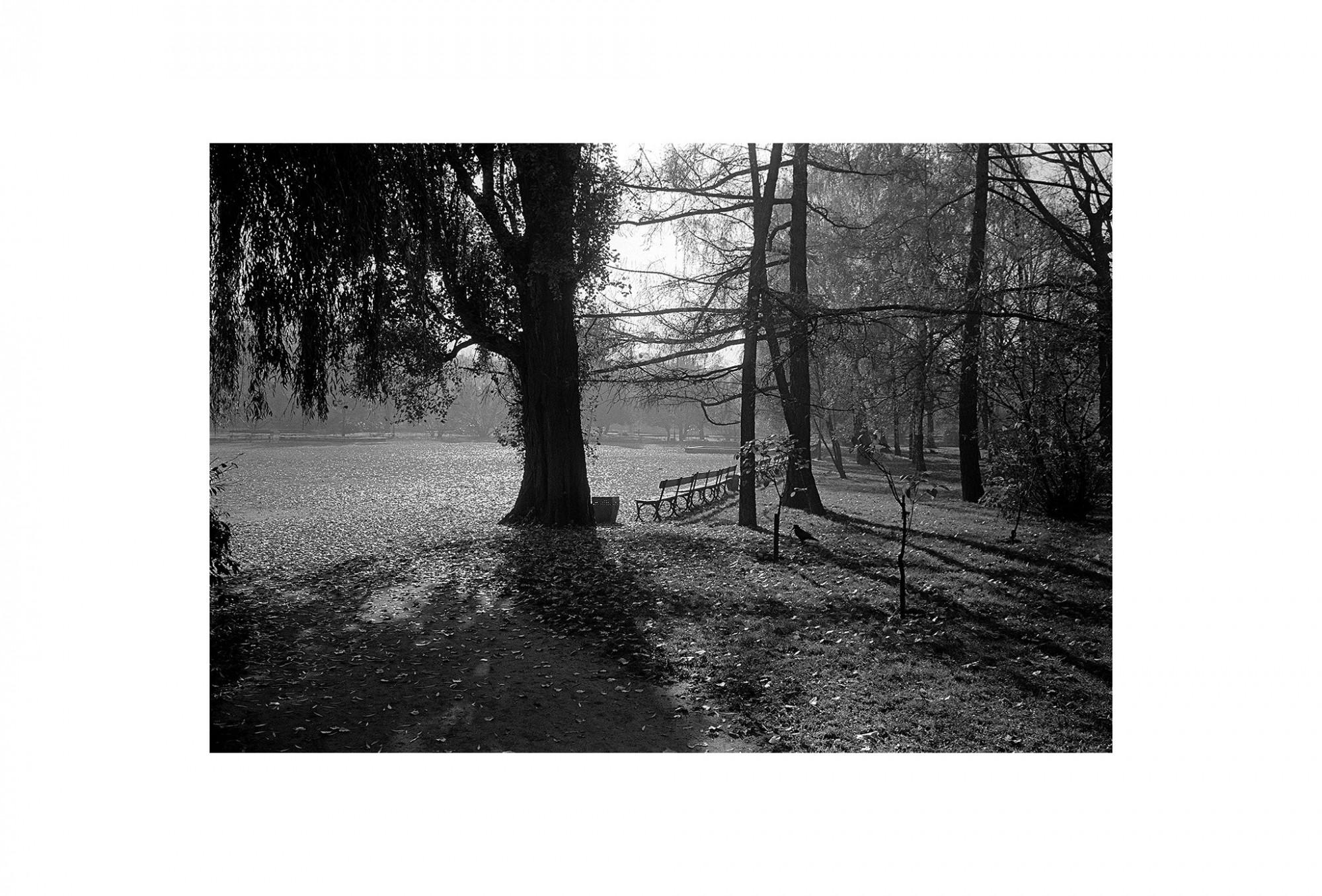 Afbeelding: Uit de reeks : Polen, een kast op glazen poten, 93-12-12, Warschau, © Dominique Van Huffel.