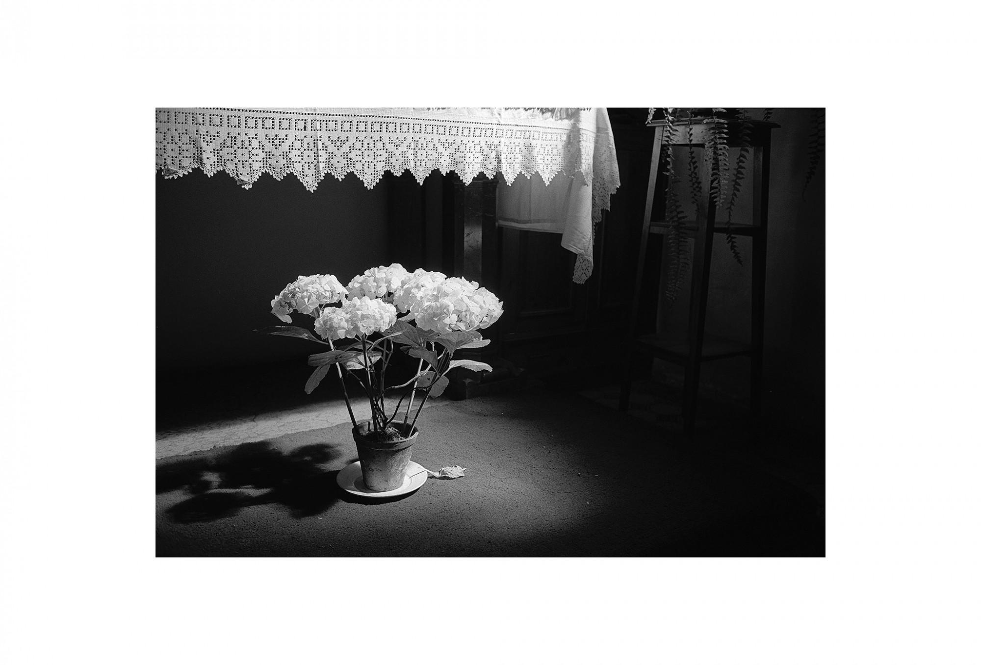 Afbeelding: Uit de reeks : Polen, een kast op glazen poten, 94-22-20, Krakow,  © Dominique Van Huffel.