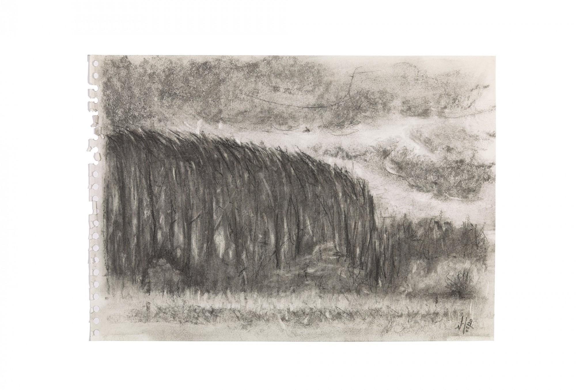 Afbeelding: Houtskool tekening H24_05_2020 - wind in de populieren - Ginoven - Vallei van het Merkske