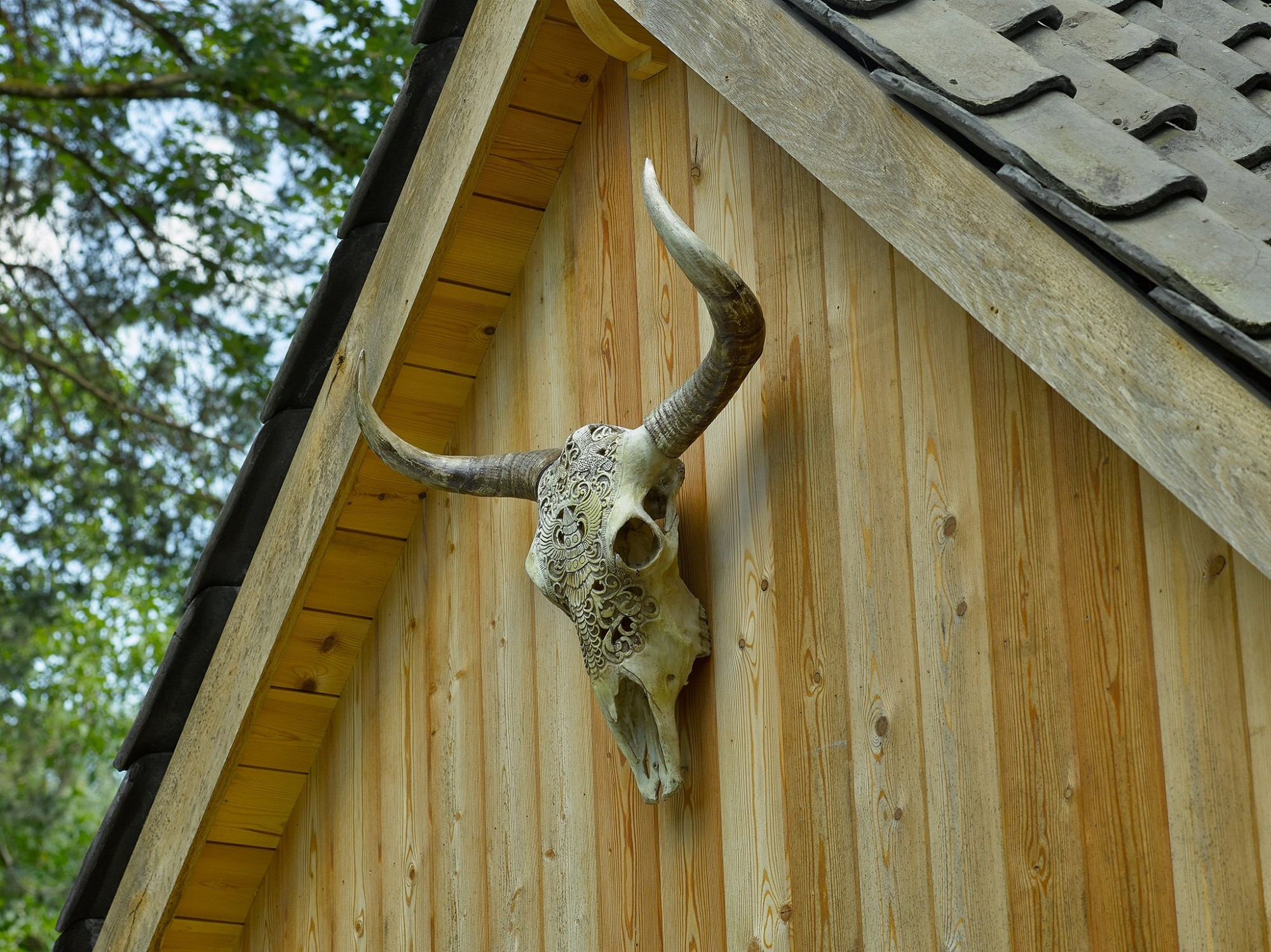 Afbeelding: Fotografie eiken bijgebouwen voor de Boomkamer, foto Van Huffel.