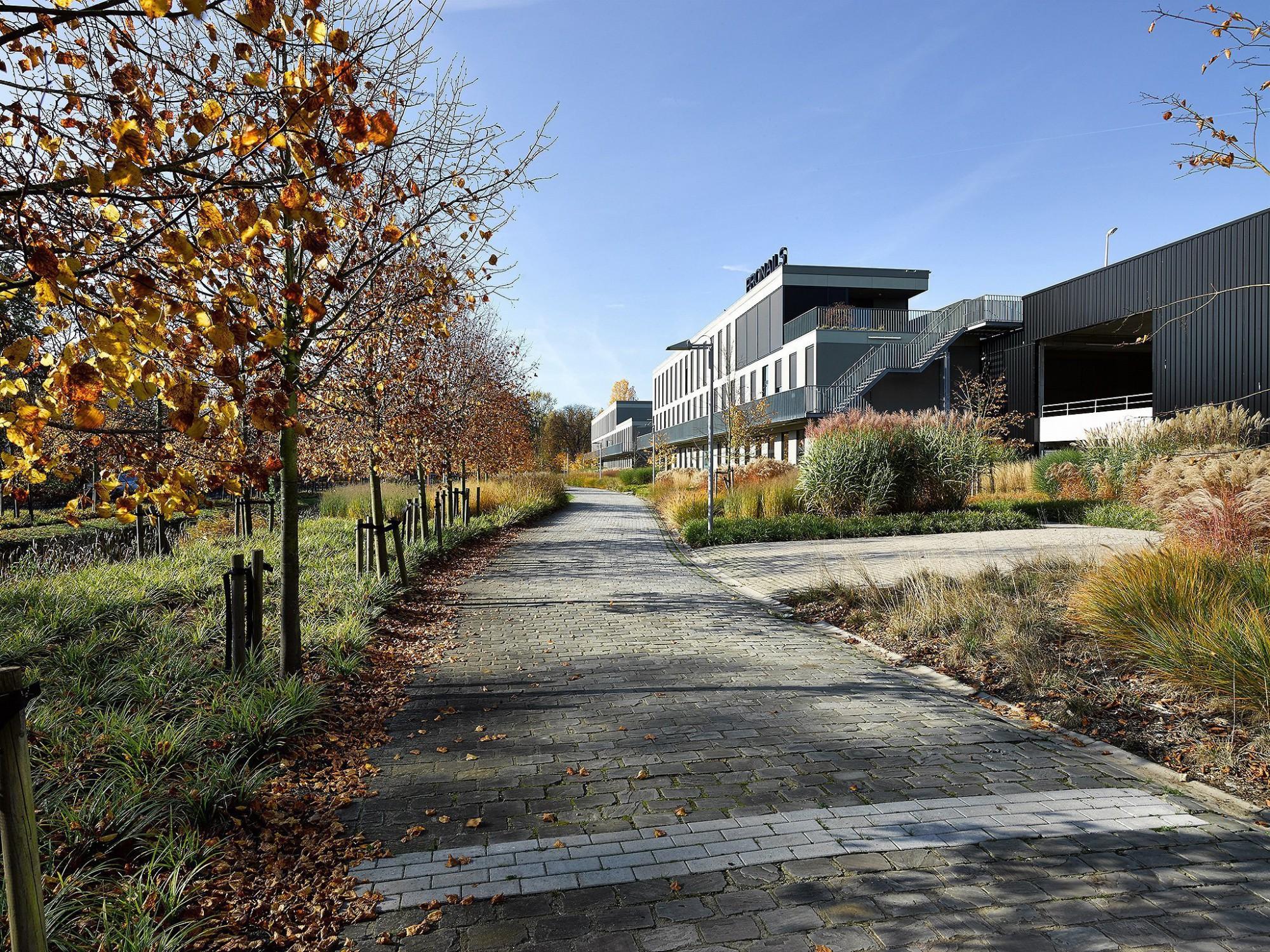 Afbeelding: Fotografie infrastructuur en tuinaanleg rond kantoorgebouw te Brasschaat, voor groep Van Roey, landschapsfotografie foto Van Huffel.