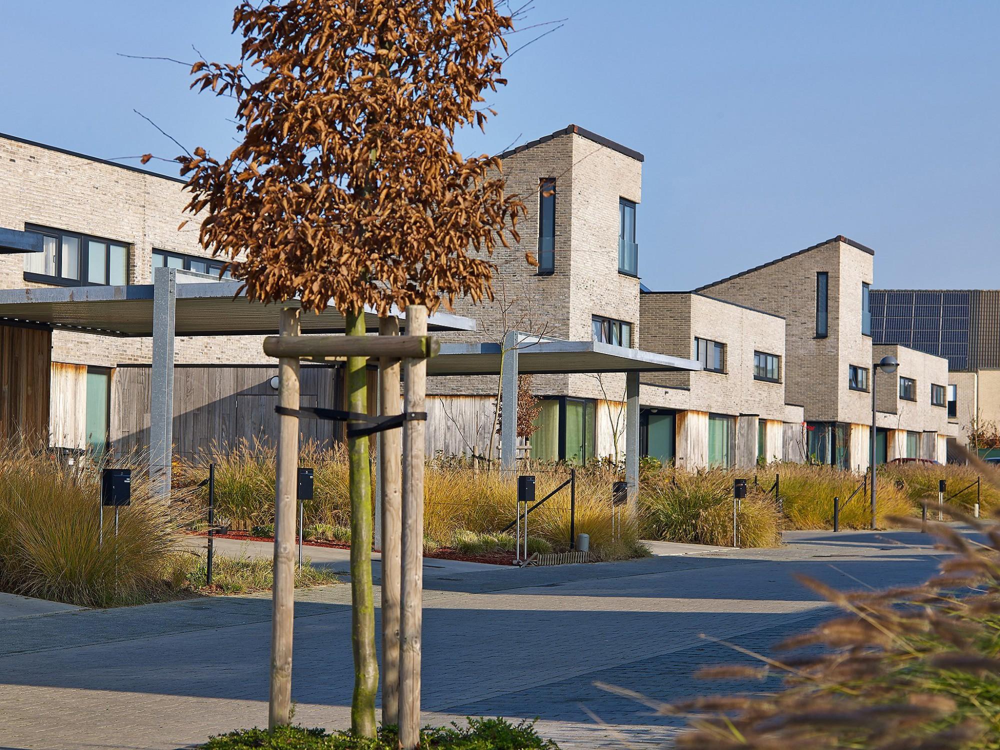 Afbeelding: Architectuur fotografie, sociale woningen te Duffel, voor Nys -Driesen.