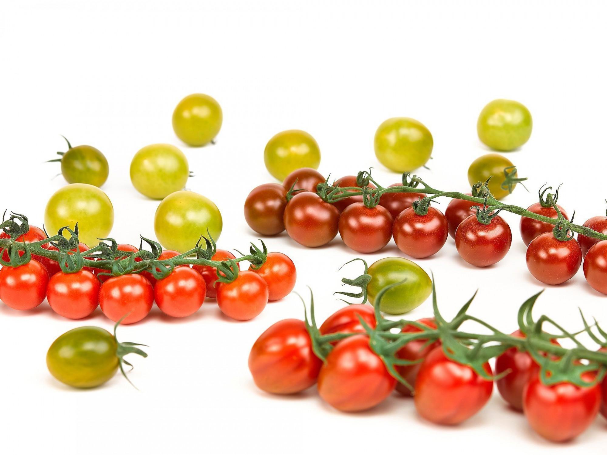 Afbeelding: Food fotografie assortiment tomaten voor Stoffels Tomaten, studio fotografie.