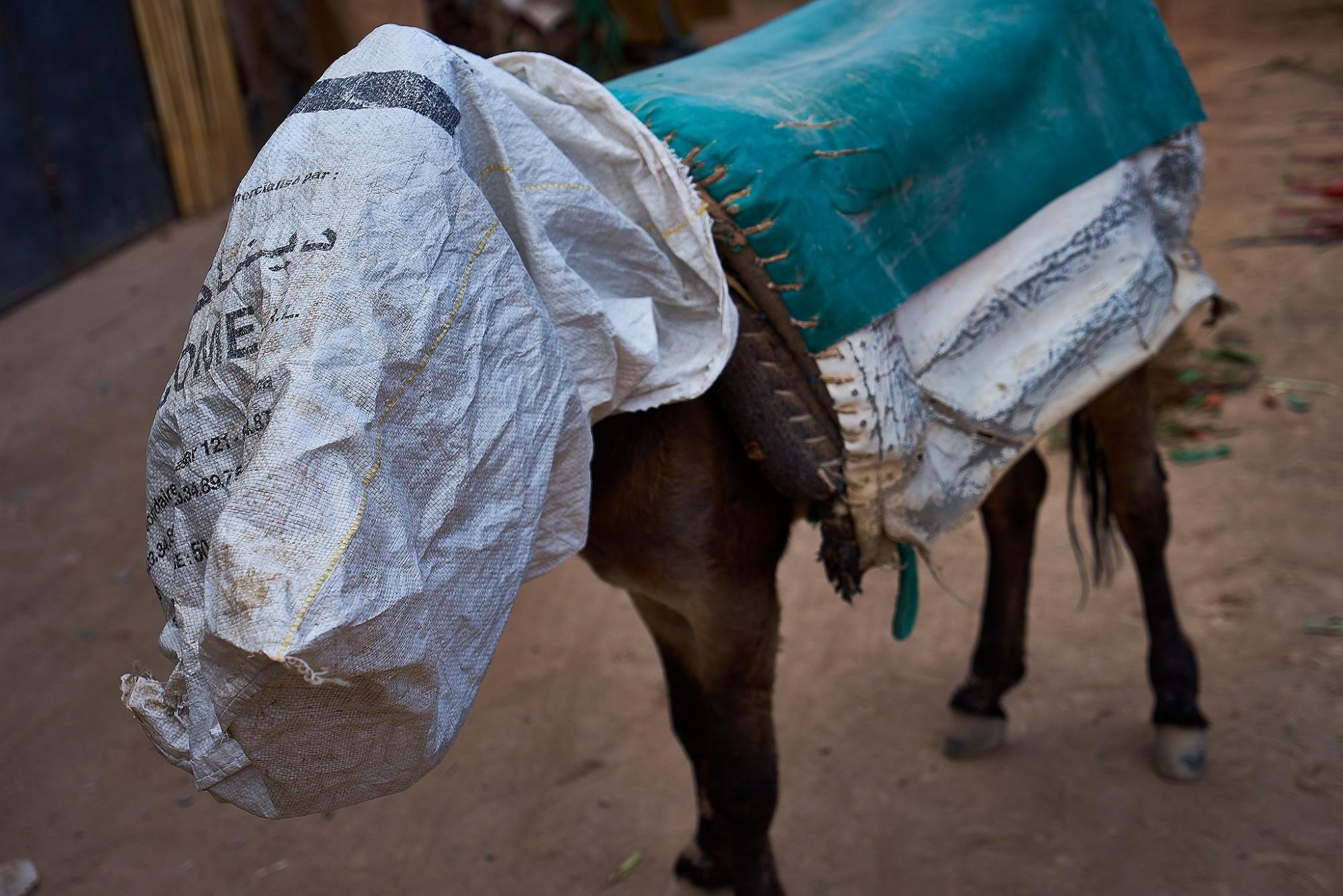 Afbeelding: Dominique Van Huffel, reisreportage, Marokko, Errachidia.