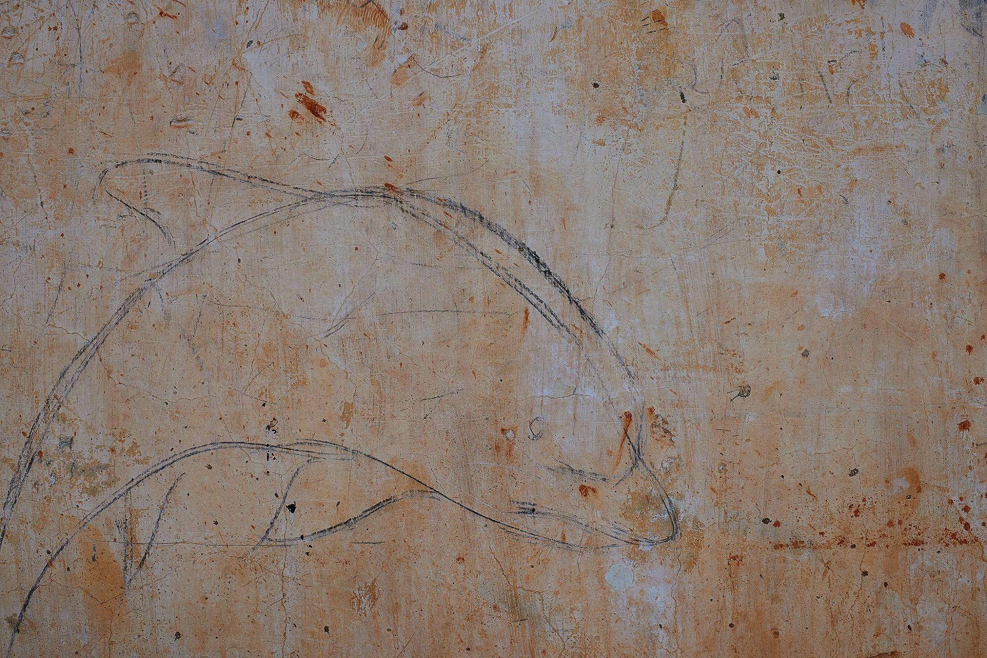 Afbeelding: Fotokunst Dominique Van Huffel, uit de reeks: Muren van geschiedenis. Cambodja.