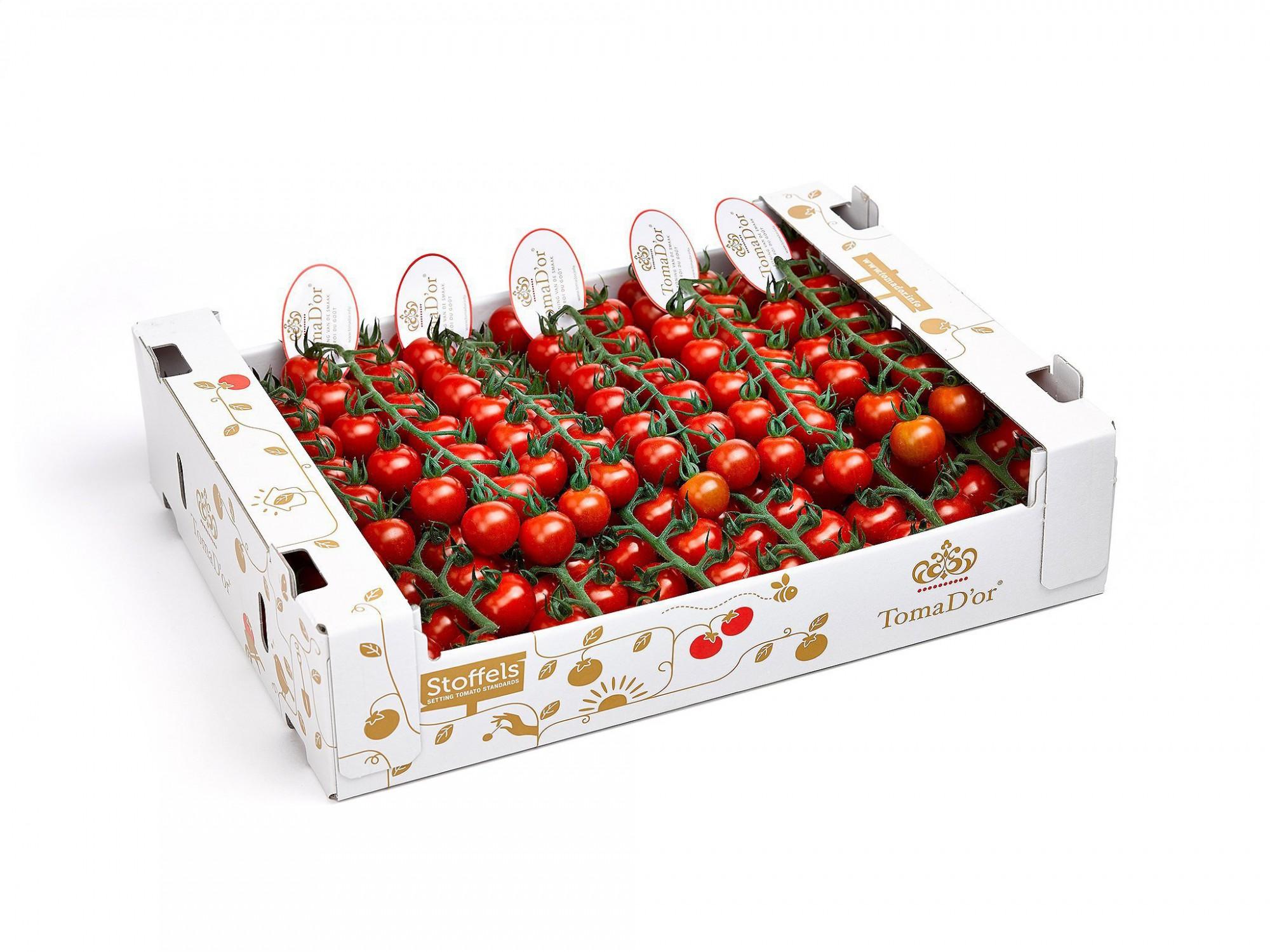 Afbeelding: Studio fotografie, productfotograaf Foto Van Huffel, fotografie packshot tomaten voor Stoffels tomaten.