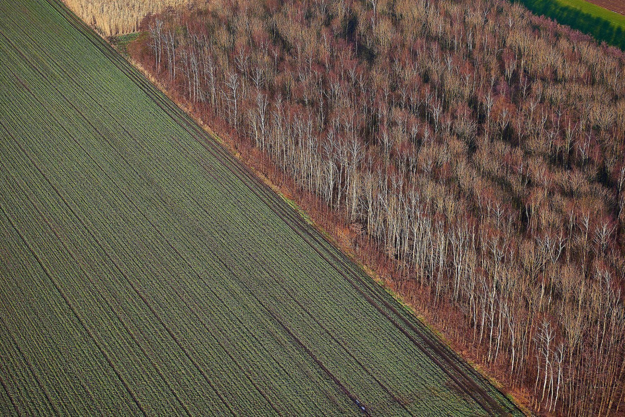 Afbeelding: Luchtfotografie met heli over gans de Benelux.