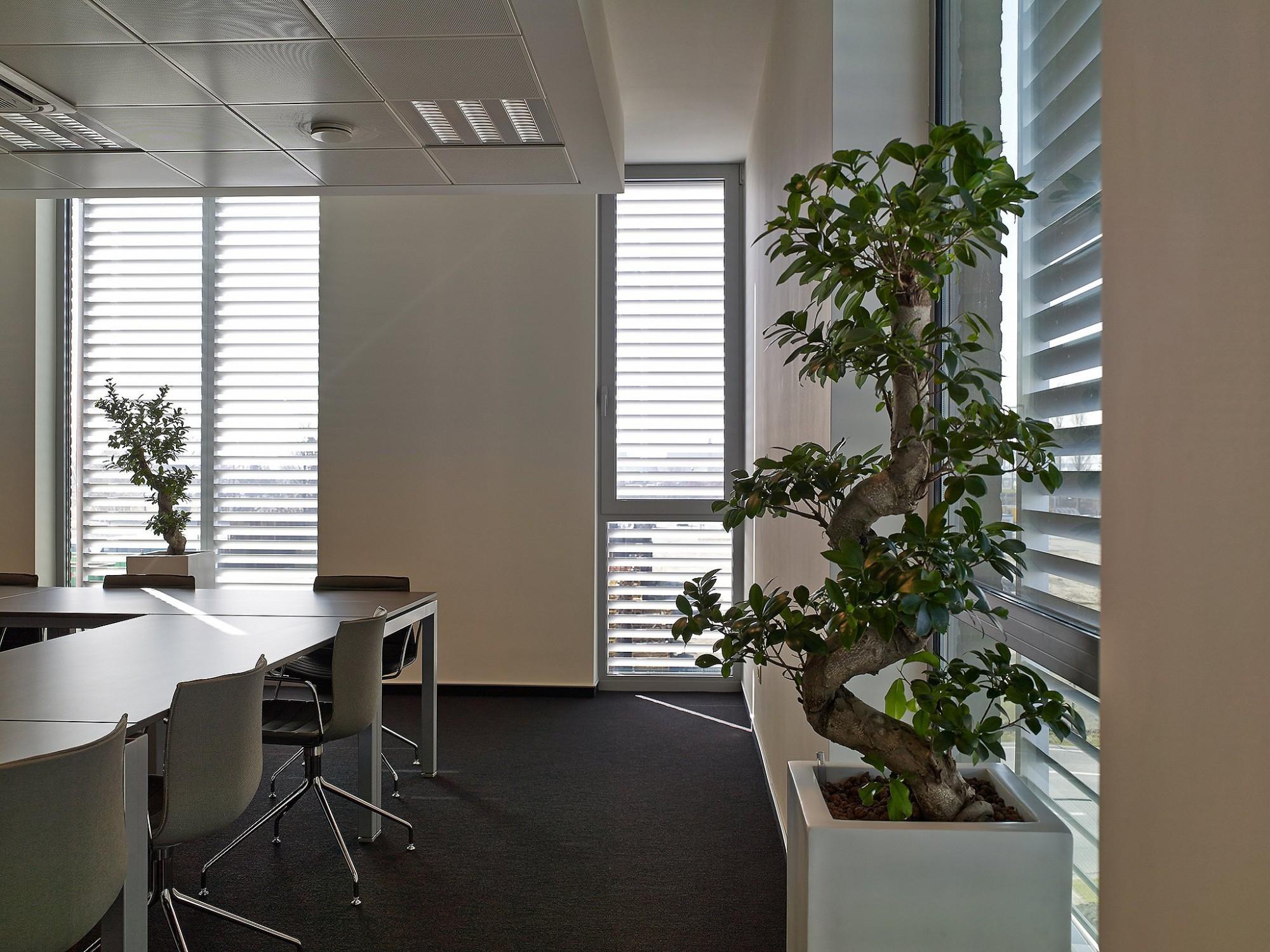 Afbeelding: Interieur fotografie kantoorruimte te Brussel voor Bolckmans.