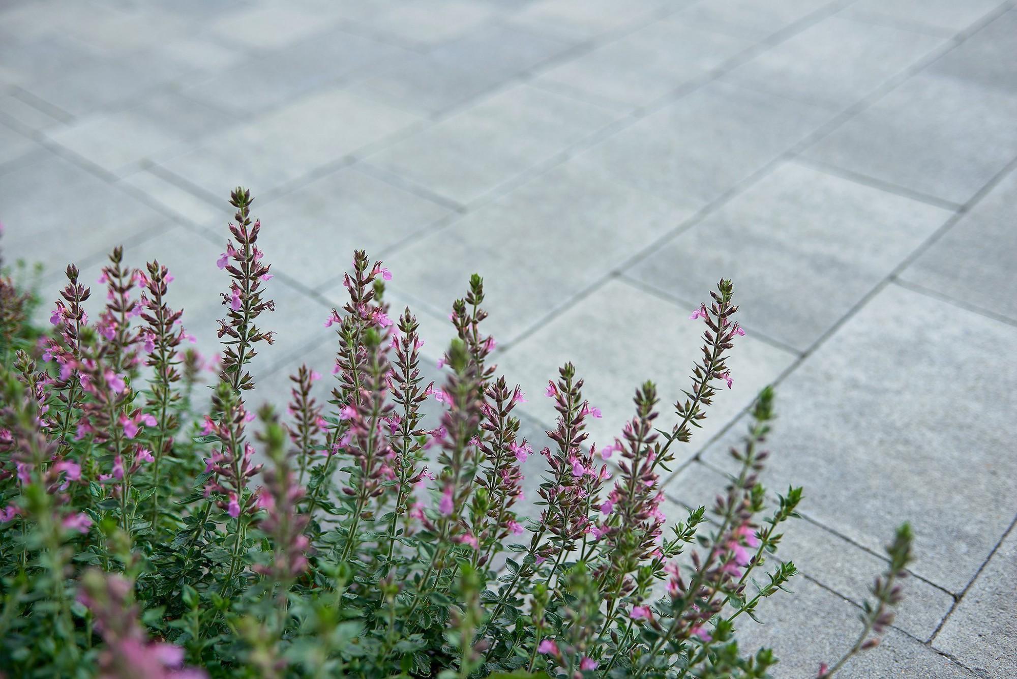 Afbeelding: Product fotografie op locatie, sfeer, tegels voor Stone & Style.