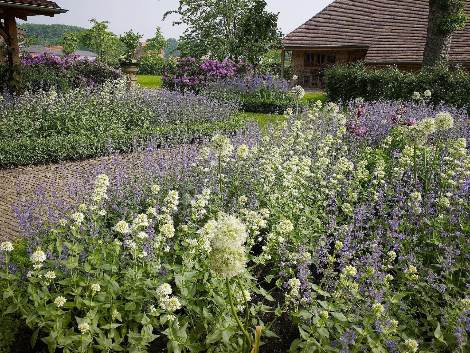 Afbeelding: Fotografie tuinen te Minderhout voor © Archi - verde, landschapsfotografie foto Van Huffel.