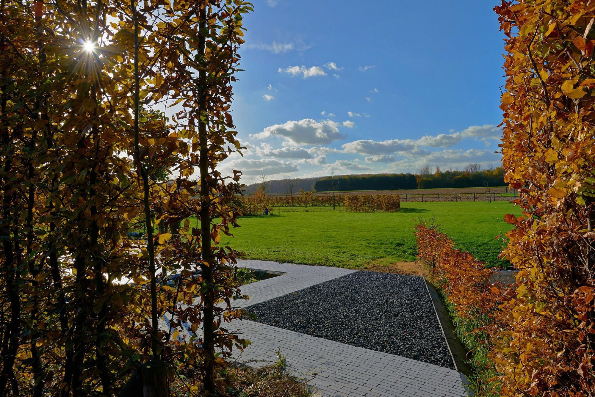 Afbeelding: Herfst, prachtige periode voor buiten fotografie,o.a. fotografie van tuinen voor © Duo Verde