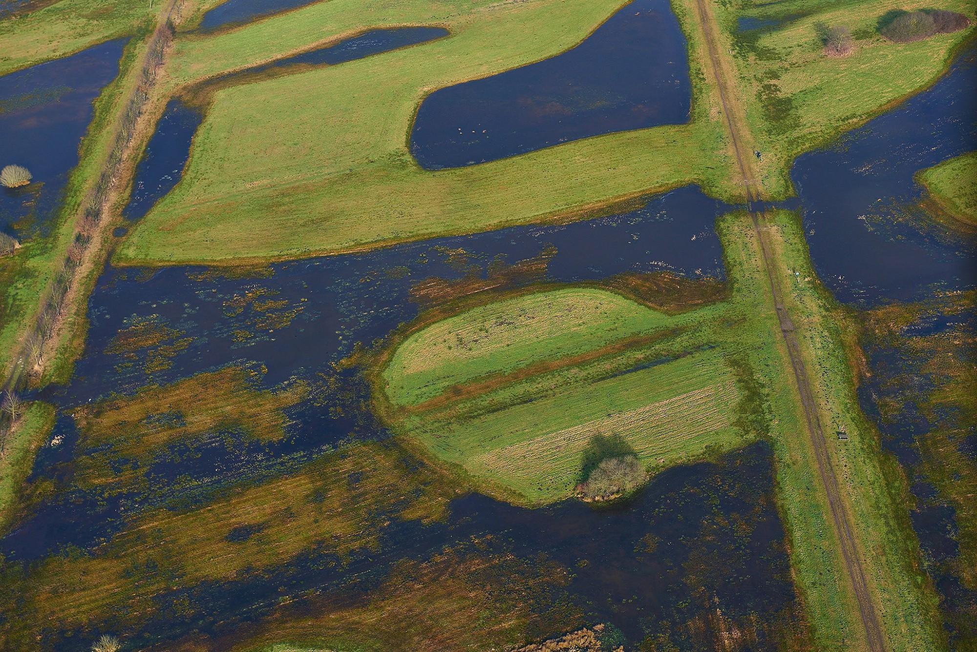 Afbeelding: Luchtfotografie met heli over gans de Benelux, natuurgebied in de buurt van Twente NL.