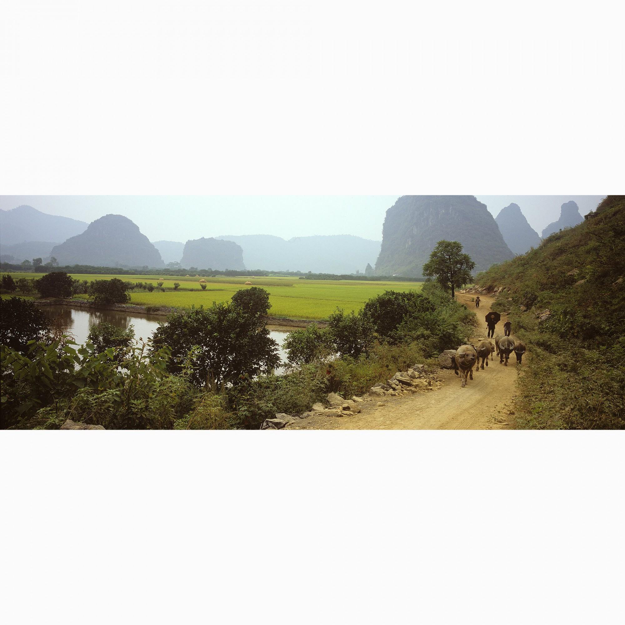 Afbeelding: Reisfotografie Dominique Van Huffel, China.