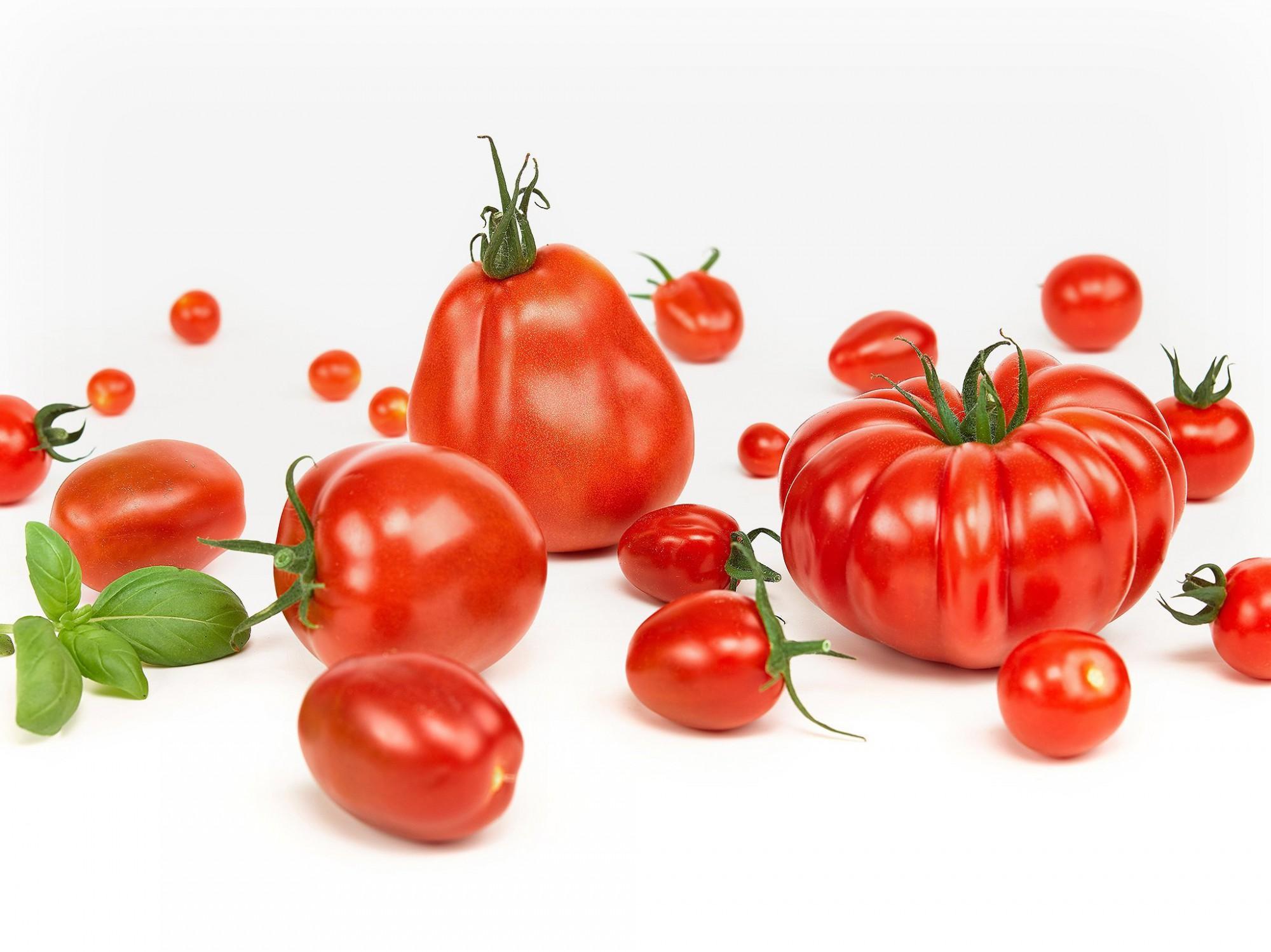 Afbeelding: Studiofotografie voor Stoffels Tomaten. Studio op locatie, packshot fotografie, Foto Van Huffel.