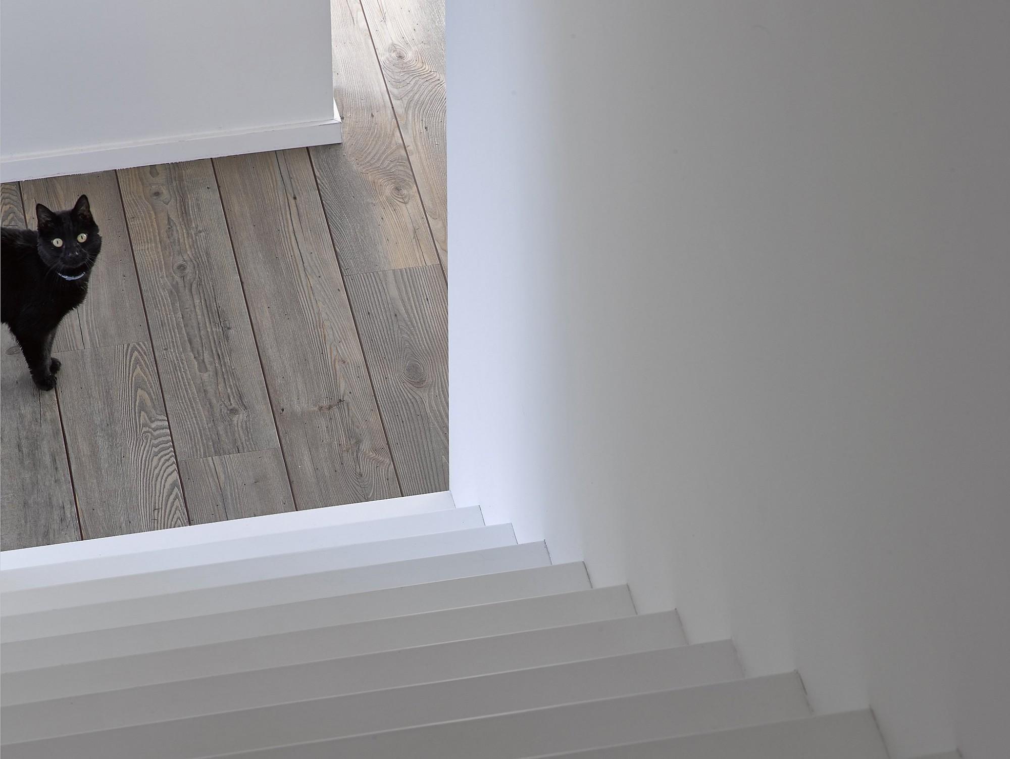 Afbeelding: Product fotografie trappen en parketvloer voor Eddy de Prins.