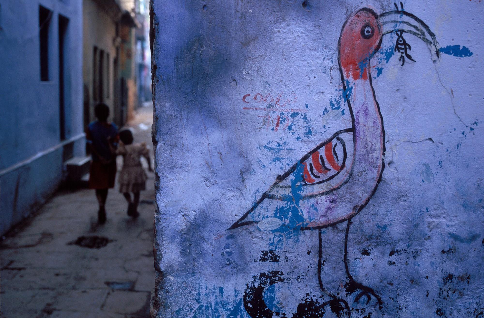 Afbeelding: Fotokunst Dominique Van Huffel, uit de reeks: Muren van geschiedenis. India.