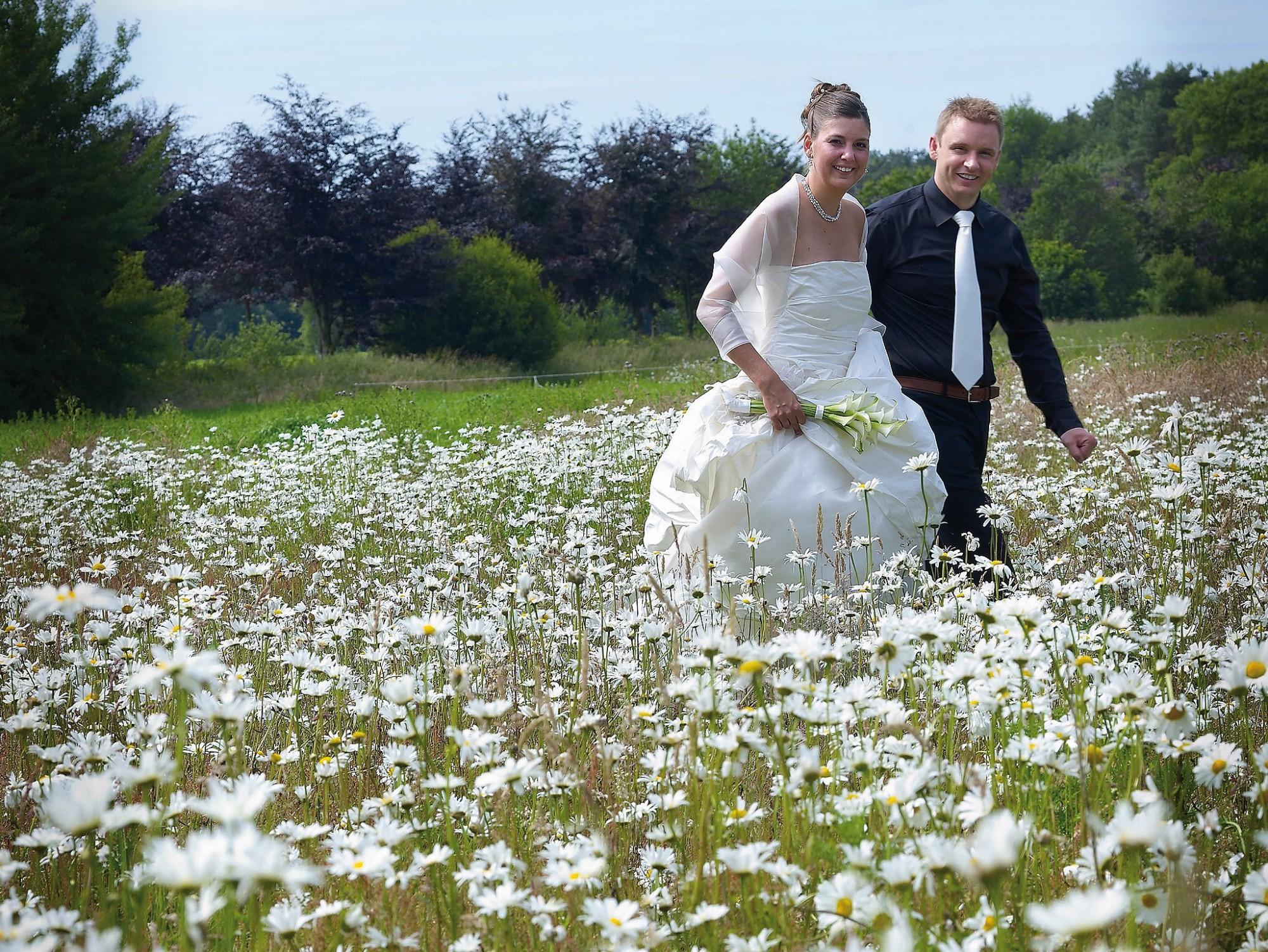 Afbeelding: Huwelijksreportages met stijl, madelieven veld.
