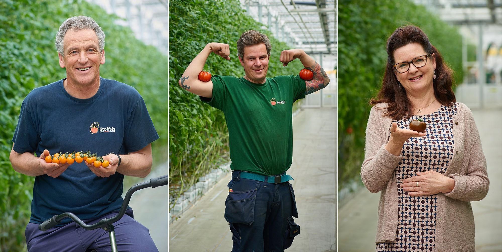 Afbeelding: Fotografie medewerkers Stoffels tomaten, met hun favoriete tomaat.